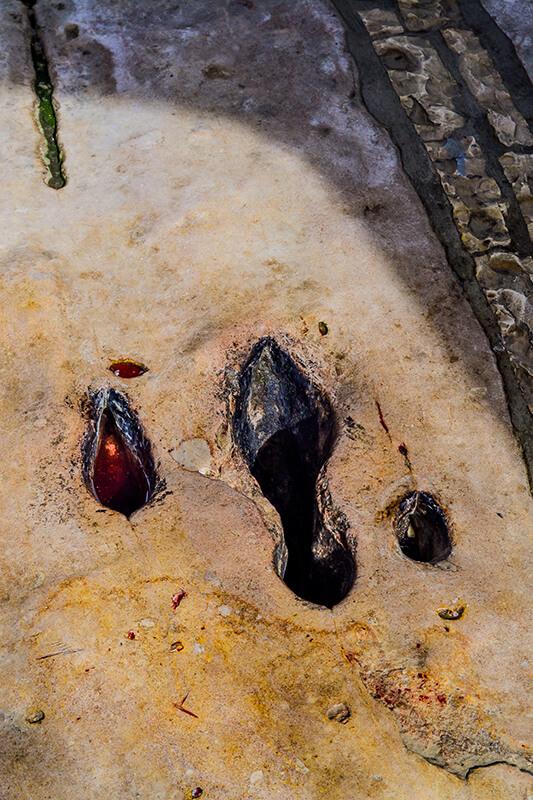 The Footprint of Abaz Aliu